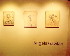 Expo Gavilan